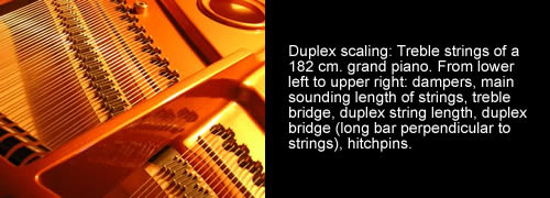 Duplex scaling: Treble strings of a  182 cm. grand piano. From lower left to upper right: dampers, main sounding length of strings, treble bridge,  duplex string length, duplex bridge (long bar perpendicular to strings), hitchpins.